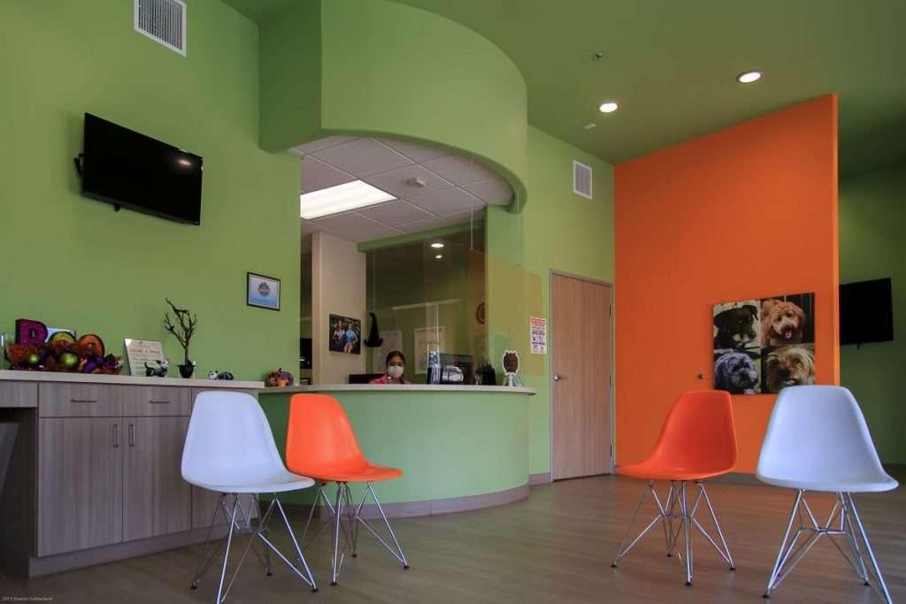 Front reception area - Blume Pediatric Dentistry San Antonio, TX
